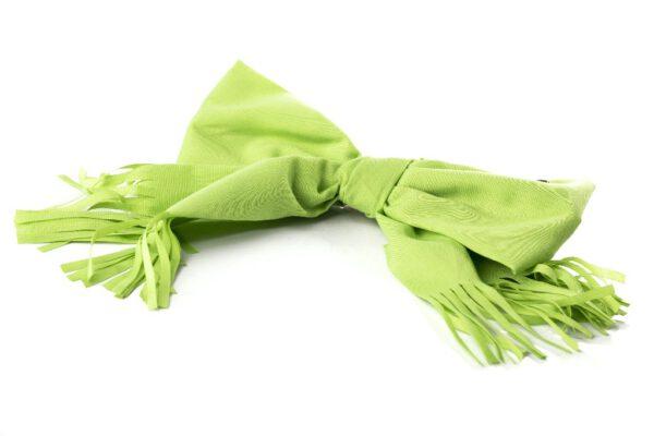 B19-301-6 סיכה פפיון פרנזים בצבע ירוק
